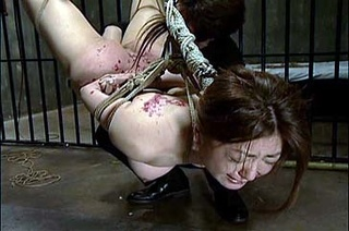 hogtied and hung asian