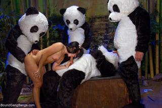 Xxx panda