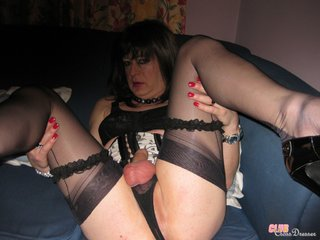 collection crossdressers sexy female