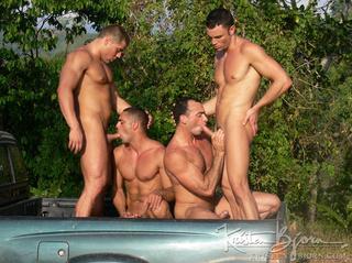 wild gays muscular bodies
