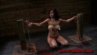 bondage, exotic, rough sex, vixen