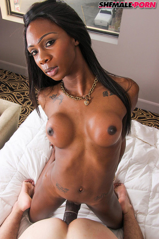 Ebony Shemale Blowjob Swallow