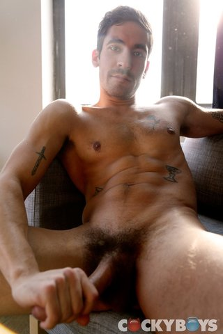 couch, gay, gorgeous, white