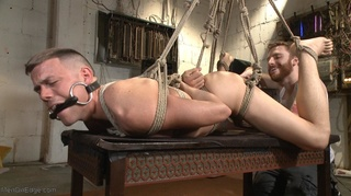 gagged hogtied suspended guy
