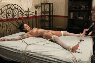 tattooed babe suspended tied