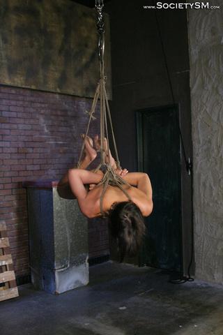 brunette sex slave tied