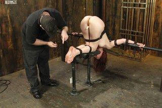 ass, bondage, nipples, tits