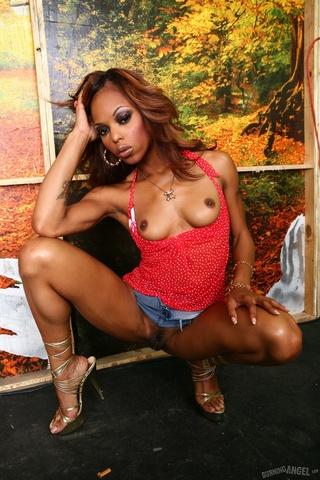 slim ebony sedcutress pulls